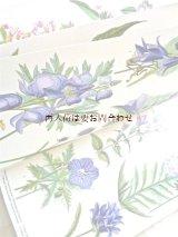 ☆楽しい古本 伸びるページの美しい図鑑 夏から秋の植物 ボタニカルアート 解説付