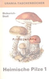 楽しい古本 洋古書★  キノコ  カラーイラスト 図鑑シリーズ