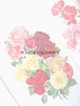 楽しい古本☆  バラ 図鑑 レトロ写真 植物画 豪華バラ ブーケ イラスト多数  ボタニカル アート