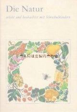 楽しい古本★ 自然の本 ナチュラル ♫ 植物 動物 蝶 昆虫 etc   イラスト多数