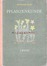 アンティーク洋書★ イラスト多数 植物学の本  ボタニカル アート 保護植物 木の実 フルーツ 50年代