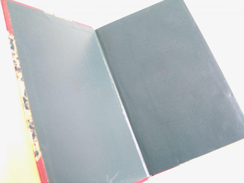 アンティーク洋書★ 美デザイン ウルリッヒ・フォン・フッテン  背表紙四隅レザー 岩石のような模様の古書